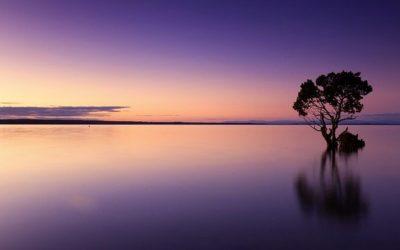 Méditation de pleine conscience: Dites adieu au stress