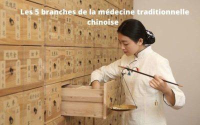 Les 5 branches de la médecine traditionnelle chinoise