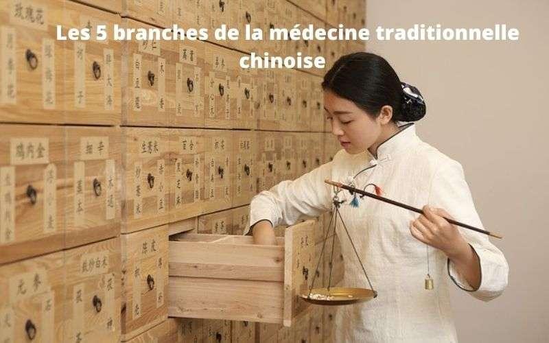 les 5 branches de la médecine traditionnelle chinoise - mtc